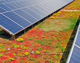 Dachbegrünung mit Solaranlagen