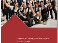 ZVDH-Geschäftsbericht 2020 online