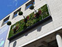 Bildquelle: Bundesverband GebäudeGrün